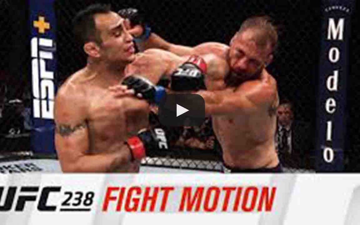 fight motion